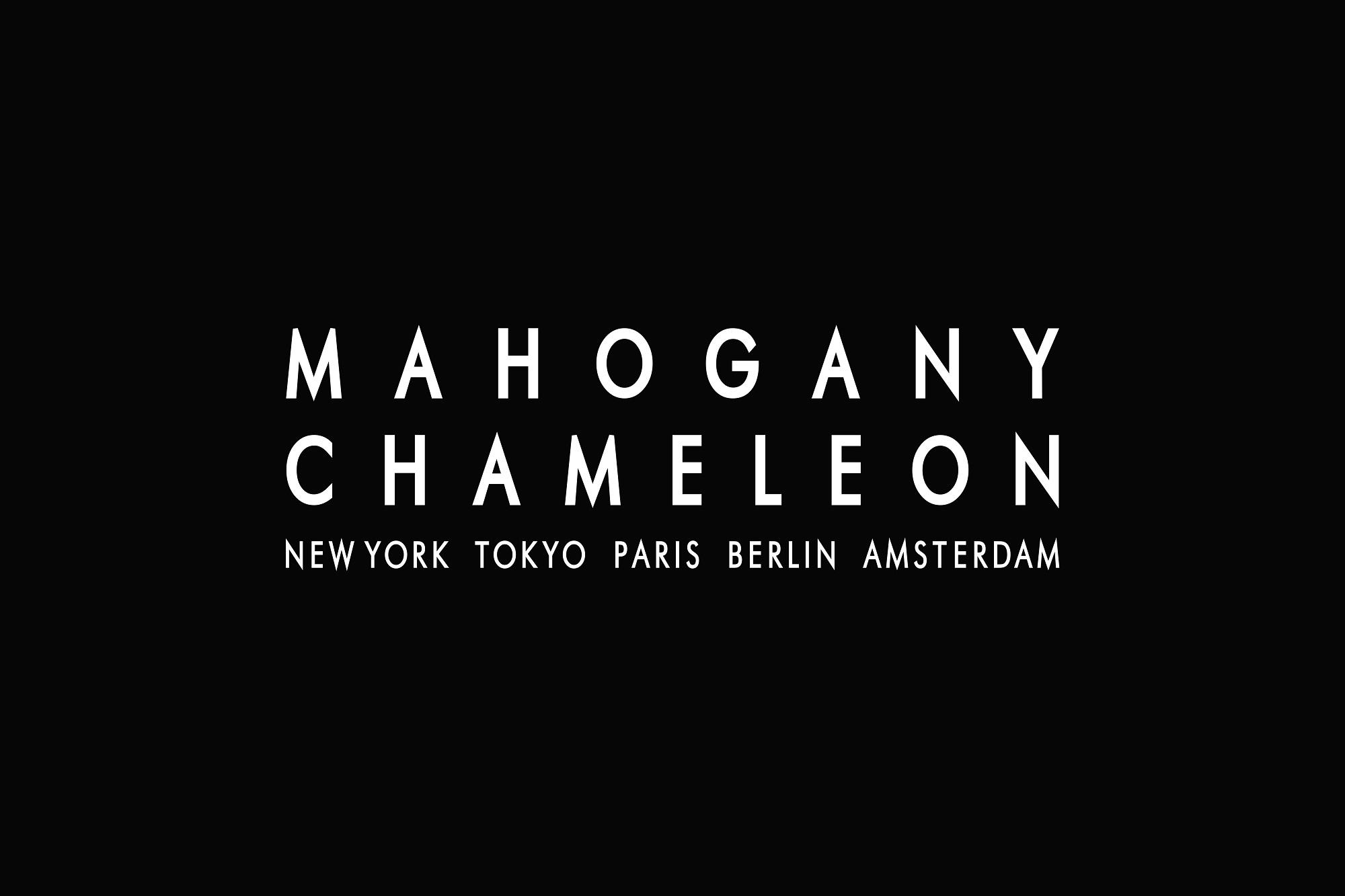 MahoganyChameleon_TOP